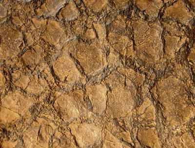 Textured Digital Art - Antique Texture by Gina Dsgn
