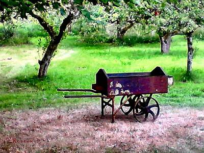 Photograph - Antique Wheelbarrow by Sadie Reneau