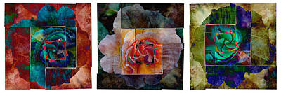 Any Other Rose Triptych I Art Print by AGeekonaBike Photography