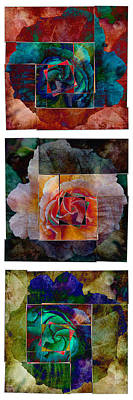 Any Other Rose Triptych II Art Print by AGeekonaBike Photography