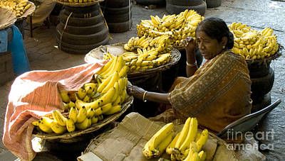 Photograph - Anyone For Bananas? by Mini Arora