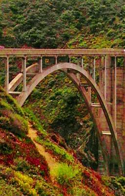 Anyone Seen The Bridge Print by Sharon Costa
