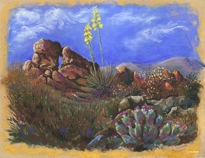 Anza Borrego April Art Print