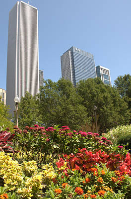 Photograph - Aon Center And Skyline by Caroline Stella