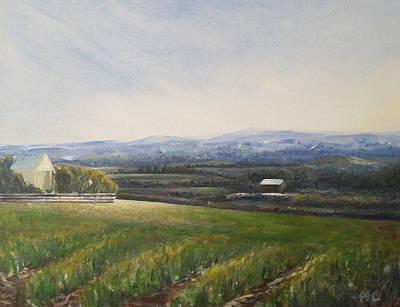 Aotearoa Art Print by Jane  See