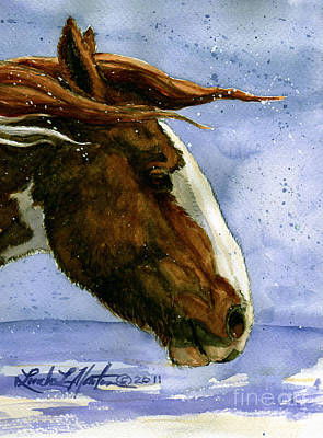 Mustang Painting - Apache Bachelor Stallion Of Sand Wash Basin by Linda L Martin