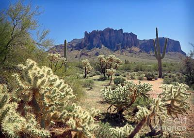 Steampunk - Apache Trail Cholla Cactus by Martin Konopacki