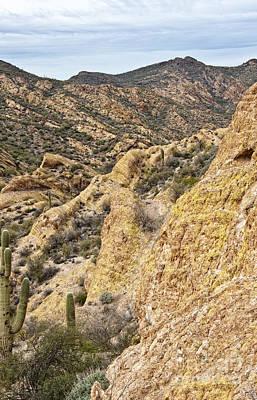 Photograph - Apache Trail Springtime by Lee Craig