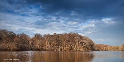Photograph - Apalachicola River 2 by Debra Forand