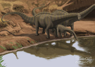 Brontosaurus Digital Art - Apatosaurus Dinosaurs Drinking Water by Michele Dessi