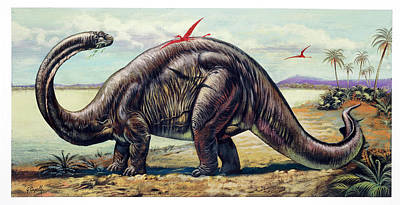 Apatosaurus With Pterosaurs Art Print by Deagostini/uig