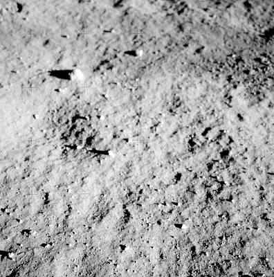 Aldrin Photograph - Apollo 11 Lunar Surface by Nasa