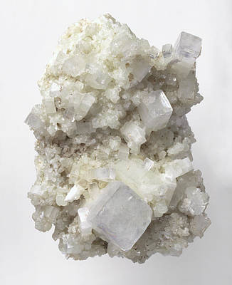 Single Object Photograph - Apophyllite Crystals by Dorling Kindersley/uig