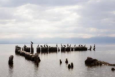 Apostles Of The Salton Sea Original by Hugh Smith