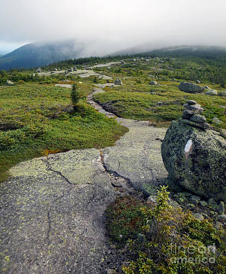 Photograph - Appalachian Trail Mountain Path Saddleback Maine by Glenn Gordon