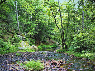 Photograph - Appalachian Creek I I by Paulette B Wright