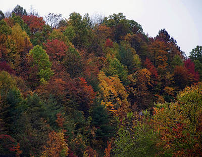 Featured Images Digital Art - Appalachian Mountain Fall by Chris Flees