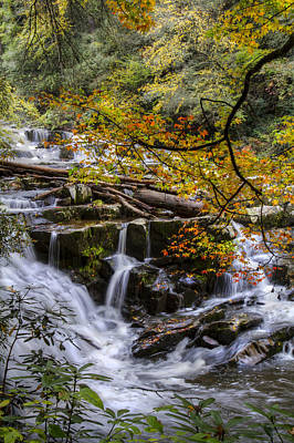 Smokys Photograph - Appalachian Mountain Waterfall by Debra and Dave Vanderlaan