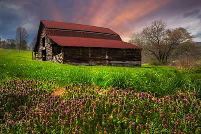 Appalachian Spring Art Print by Debra and Dave Vanderlaan