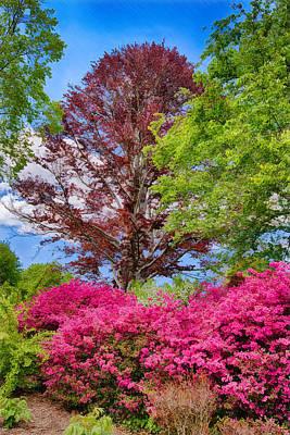 Painting - Appalachian Spring by John Haldane