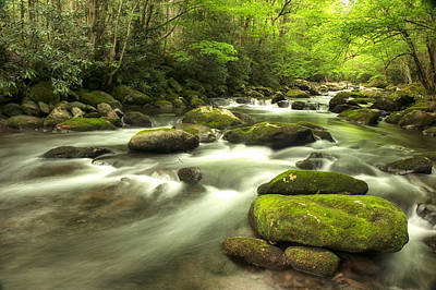 Appalachian Spring Stream Art Print by Phyllis Peterson