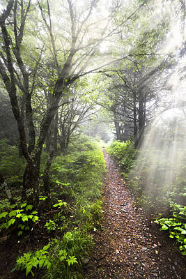 Smokys Photograph - Appalachian Trail by Debra and Dave Vanderlaan