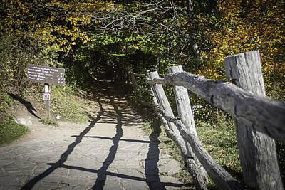 Photograph - Appalachian Trail by Karen Stephenson
