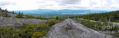 Photograph - Appalachian Trail Moxie Bald 2 by Glenn Gordon