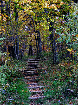 New Hampshire Tours Photograph - Appalachian Trail by Skip Willits