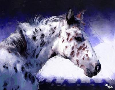 Painting - Appaloosa Pony by Roger D Hale