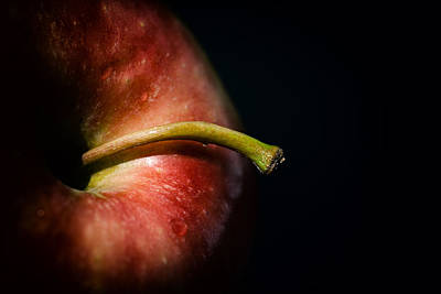 Apple Photograph - Apple A Day by Karol Livote