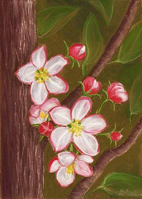 Florals Painting - Apple Blossom by Anastasiya Malakhova