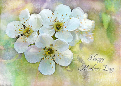 Photograph - Apple Blossom Mothers Day Card by Debbie Portwood