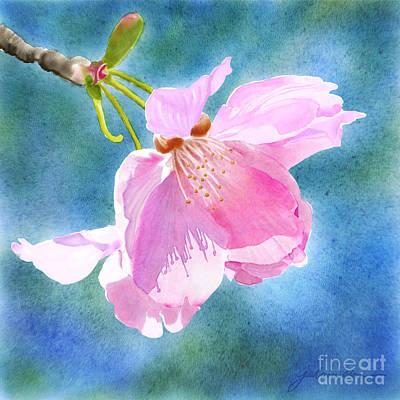 Painting - Apple Blossom On Blue by Joan A Hamilton