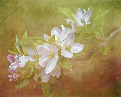 Painting - Apple Blossom Spring by TnBackroadsPhotos