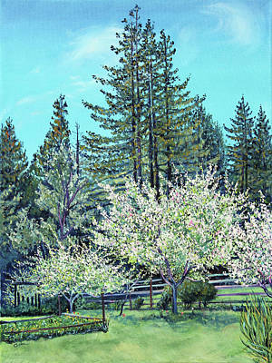 Art Print featuring the painting Apple Blossoms And Redwoods by Asha Carolyn Young