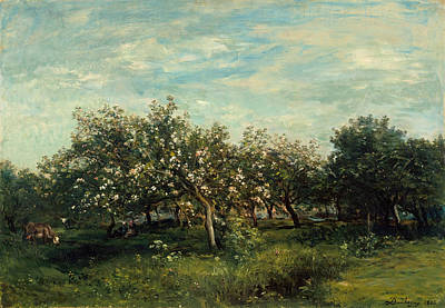 Painting - Apple Blossoms by Charles-Francois Daubigny