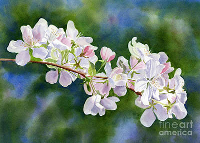 Pink Flower Branch Painting - Apple Blossoms With Blue Green Background by Sharon Freeman