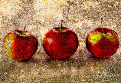 Apple Art Print by Bob Orsillo