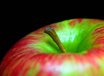 Photograph - Apple Core by Diana Angstadt