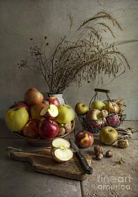 Autum Photograph - Apple Fest by Elena Nosyreva