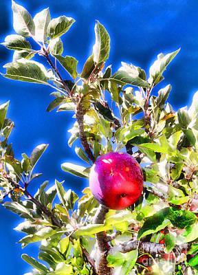 Photograph - Apple For One By Diana Sainz by Diana Raquel Sainz