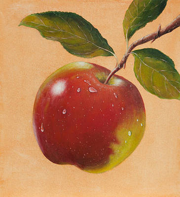 Apple Art Print by James Zeger