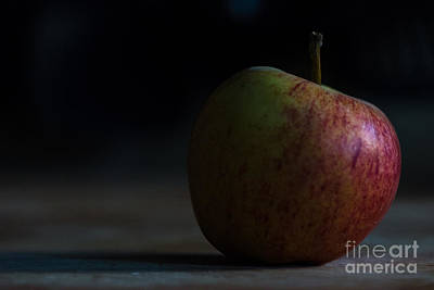 Photograph - Apple Low Key by Matt Malloy