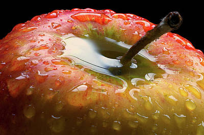 Tasty Photograph - Apple Of My Eye by Peter Davidson