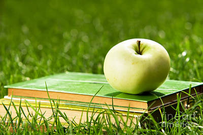 Textbook Photograph - Apple On Pile Of Books On Grass by Michal Bednarek