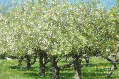 Apple Orchard Art Print by Kathleen Struckle