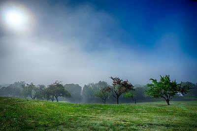 Apple Orchard Receeding Fog  Art Print by Jakub Sisak
