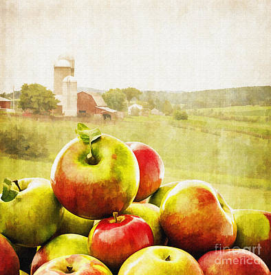 Basket Photograph - Apple Picking Time by Edward Fielding