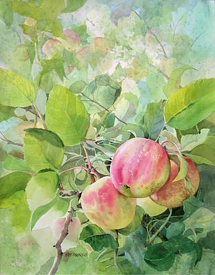 Apple Watercolor Painting - Apple Pie by Kris Parins